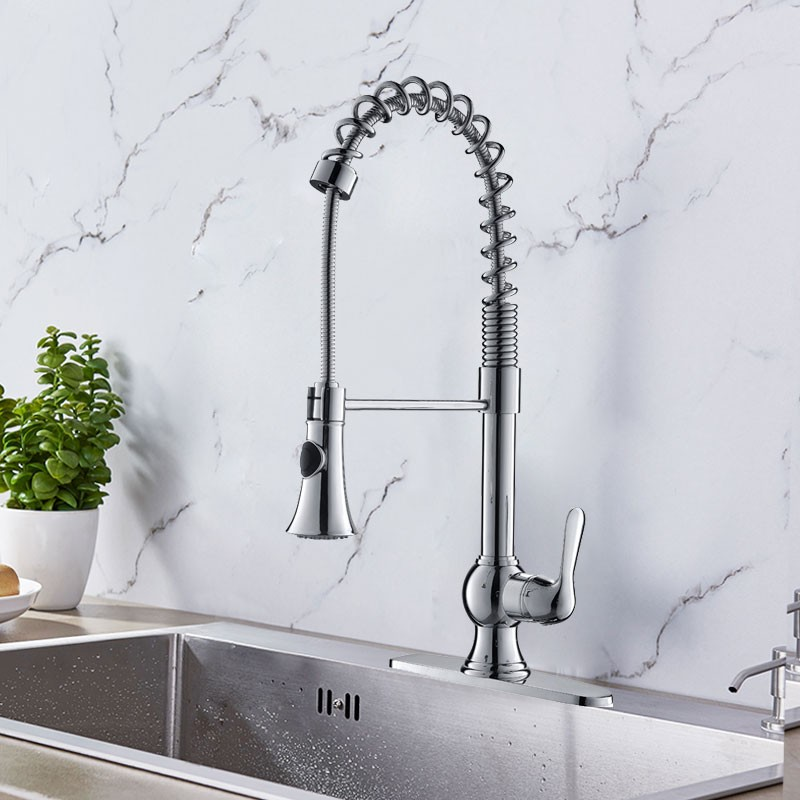 Chrome Finished Brass Kitchen Faucet Pull Out Spray Head D006ch