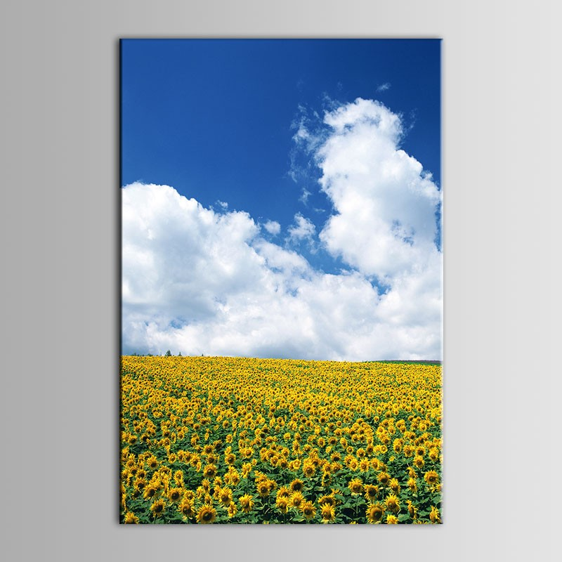Printed Landscape Oil Painting (DK-PH-DH23)