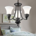 3-Light Black Wrought Iron Chandelier with Glass Shades (DK-8037-3)