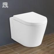 Wall Hung Toilet Bowl - White (DK-ZBQ-11025)