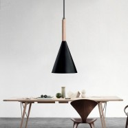1-Light Black Iron Modern Pendant Light (HYMU1211C-1)