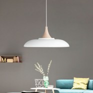 1-Light White Iron Modern Pendant Light (HYMUP1209B-1)
