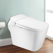 White Elongated One-piece Smart Toilet with Bidet Seat (DK-DY-001A)