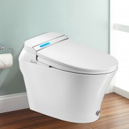 White Elongated One-piece Smart Toilet with Bidet Seat (DK-LY-001A-Z)