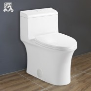 Dual Flush Siphonic Water Saving Ceramic One-piece Toilet (DK-ZBQ-12215)