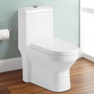 Dual Flush Siphonic One-piece Toilet (DK-ZBQ-10004A)