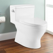 CUPC Single Flush High Efficiency Water Saving One-piece Toilet (DK-ZBQ-12234)