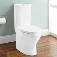CUPC Dual Flush High Efficiency Water Saving One-piece Toilet (DK-ZBQ-12238)