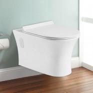 Wall Hung Toilet Bowl - White (DK-ZBQ-12249D)
