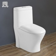Siphonic Water Saving Ceramic One-piece Toilet (DK-ZBQ-12219)