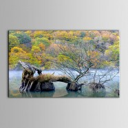 Printed Landscape Oil Painting (DK-PH-DH36)