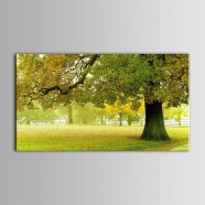Printed Landscape Oil Painting(DK-PH-DH41)
