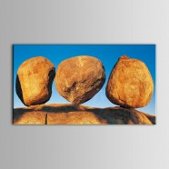 Printed Still-Life Oil Painting (DK-PH-DH42)