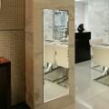 18 x 57 In Full Length Wall-mounted Mirror (DK-OD-D003)