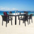 PE Rattan 7 Pieces Dining Set: 1 * Dining Table, 6 * Chair (LLS-DE-02)