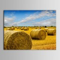 Printed Landscape Oil Painting (DK-PH-DH16)