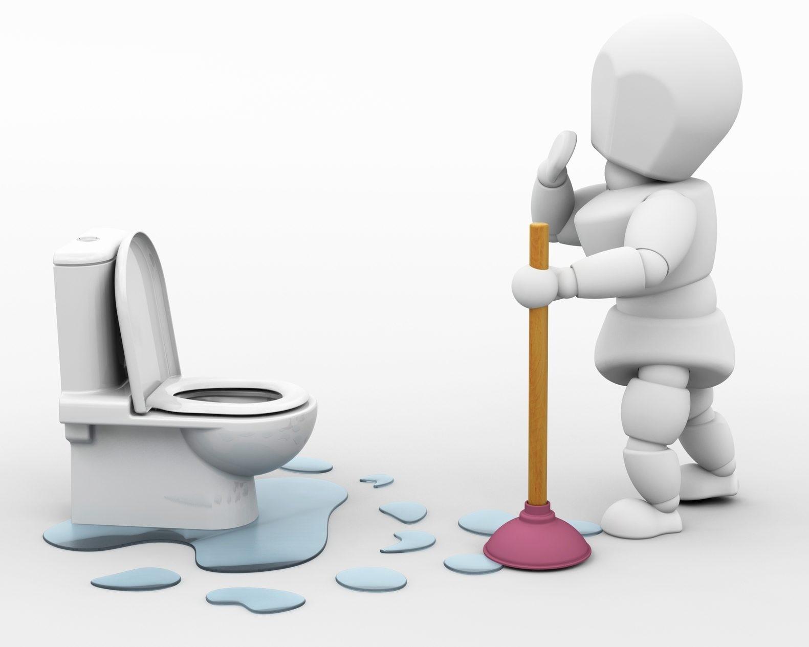 maintain toilets